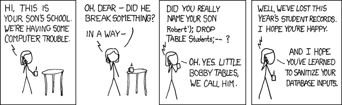 xkcd Bobby Tables Cartoon